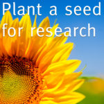 Plant a seed for research 2020
