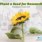 plant-a-seed-for-research